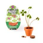 Mini kit de trèfle à 4 feuilles