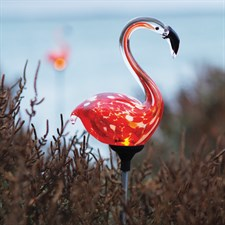 Flamant rose solaire